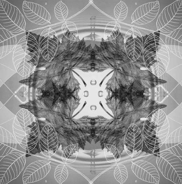 mandala_leaves