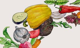 Коллекция овощей