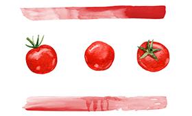 Акварельный помидор